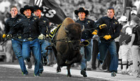 University of Colorado Sports